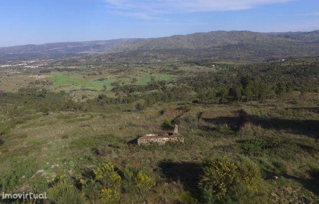 Quintinha com 7.200m2, em Aldeia da Serra, Celorico da Beira