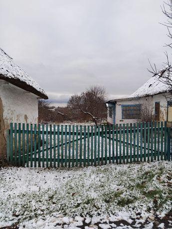 Дом с учстком в Елизаветовке