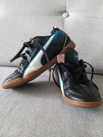 Puma sportowe buty halówki