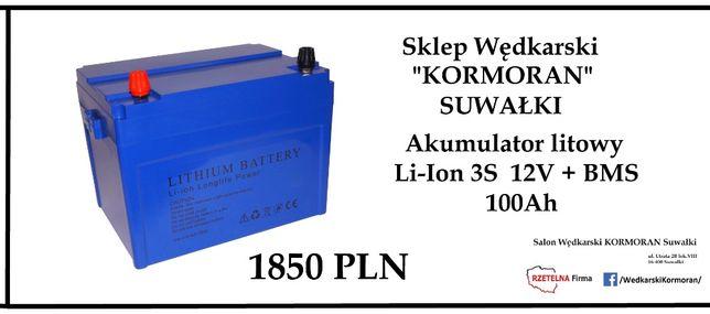 Haswing Akumulator litowy Li-Ion 3S 100Ah 12V + BMS silnik -NEGOCJUJ