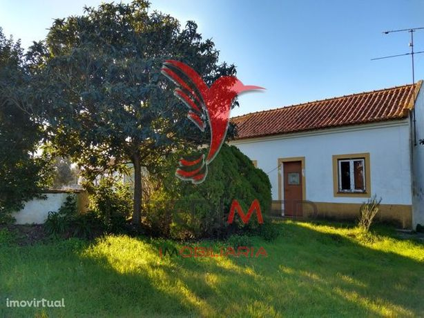 Venda conjunta de duas casas, Foros do Arrão- MONTARGIL