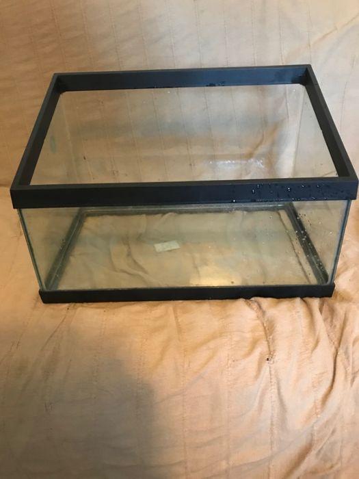 Tartarugueira em vidro Alvalade - imagem 1