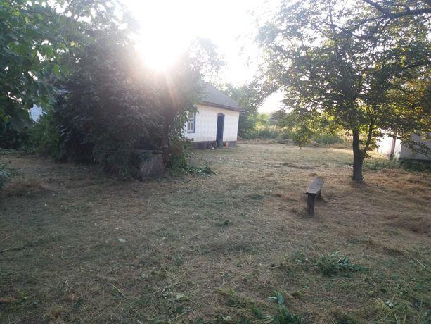 Дом в селе с приусадебным участком