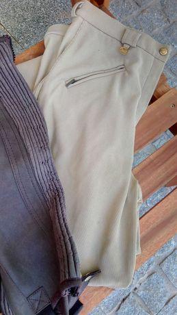Calças e polainas para hipismo/equitação em bom estado