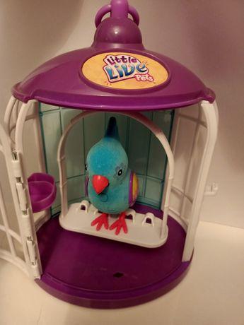 Little Live Pets Bird interaktywny ptaszek w klatce
