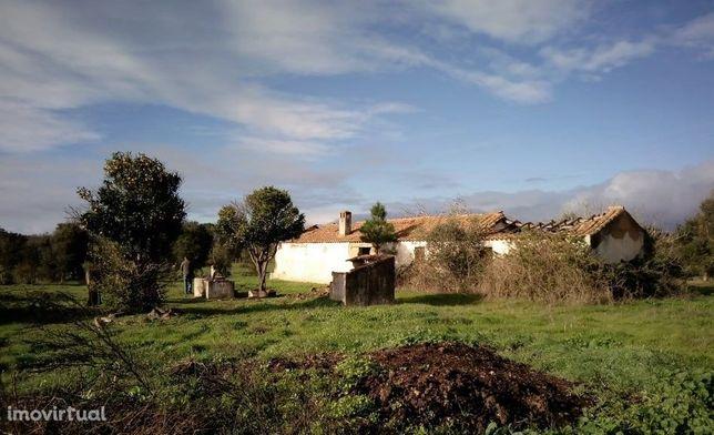 Terreno com Monte Alentejano para recuperar em Santiago do Cacém