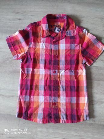 koszula krata dla chłopca rozmiar 116