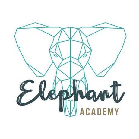 Elephant Academy korepetycje z DOJAZDEM/ONLINE