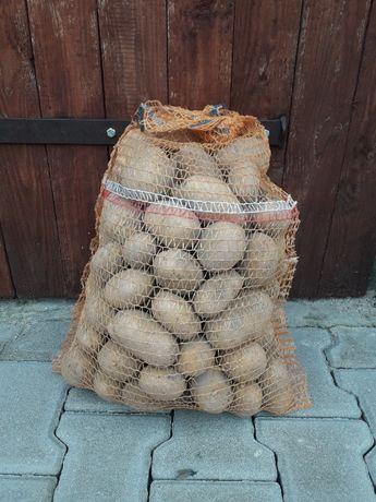 Ziemniaki - odmiana Lilly