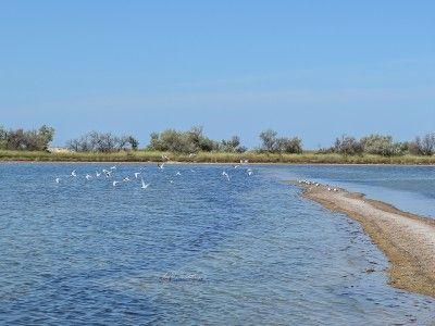 Продажа (обмен) участка на берегу моря.