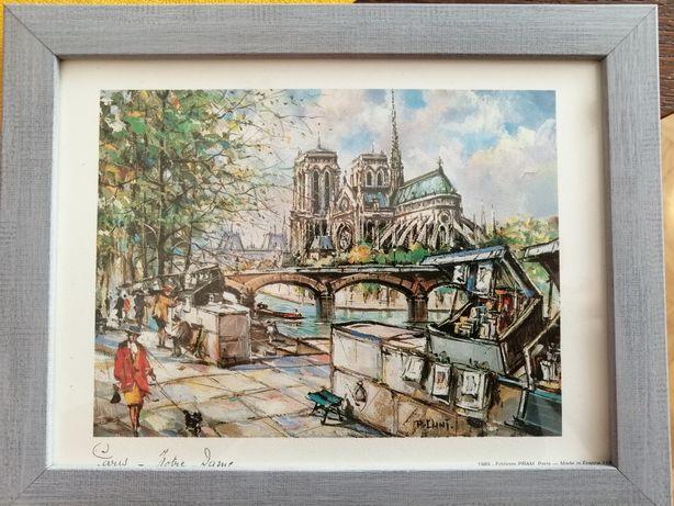 Piękna reprodukcja: Katedra Notre Dame-  prezent.