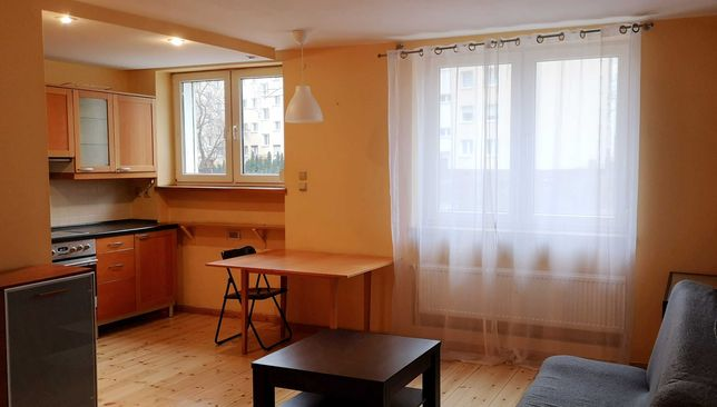 Słoneczne mieszkanie 2 pokojowe przy ul.Dmowskiego, Łazarz-Grunwald