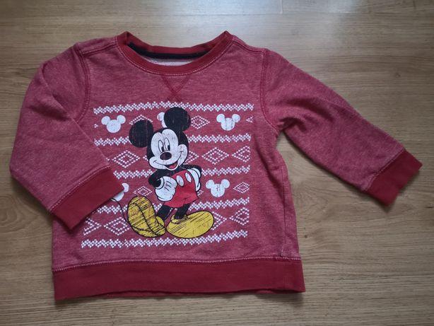 Bluza Disney dla chłopca