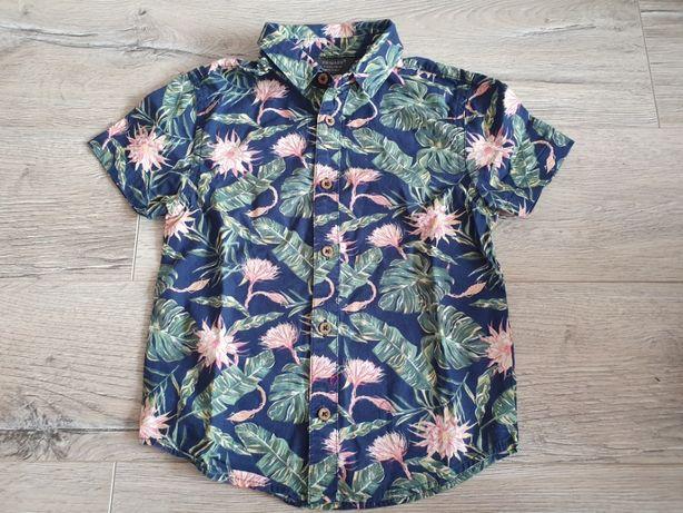 Koszula chłopięca PRIMARK rozmiar 110