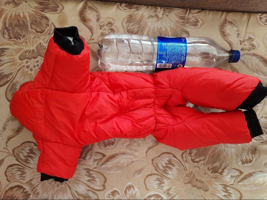 зимняя куртка для собаки Кременчуг - изображение 1