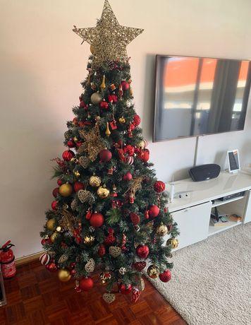 Árvore de natal .