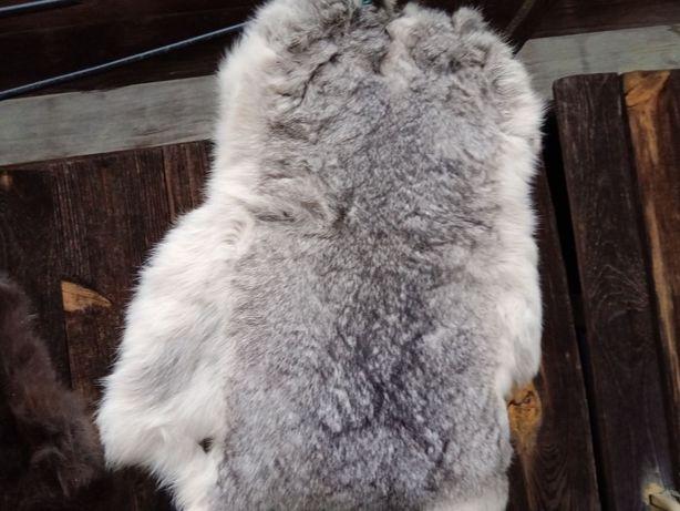 Вычиненные шкуры кролика