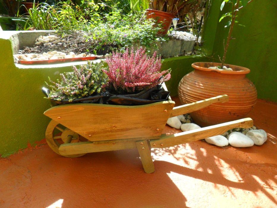 Jardinagem em Lisboa Arroios - imagem 1