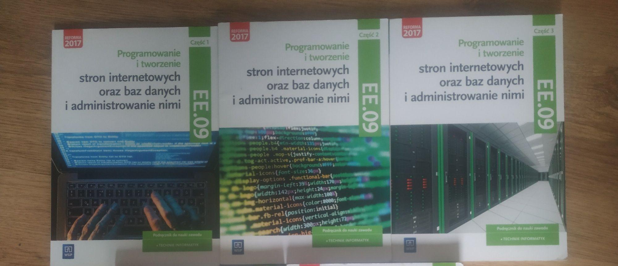 Podręczniki Technik Informatyk EE09