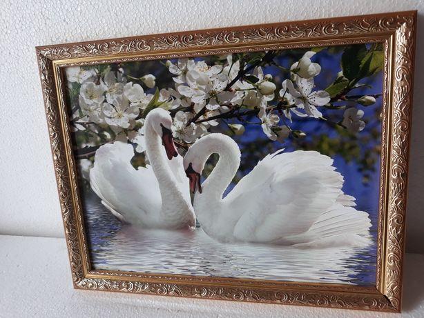РАСПРОДАЖА!!! Картини маслом и фотокартини. От 100 грн