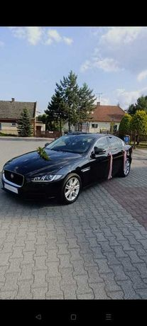 Wynajem samochód/auto do ślubu/wesele JAGUAR XF