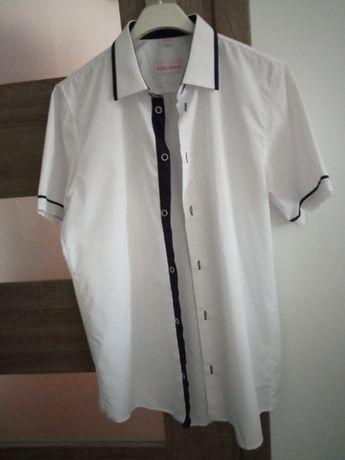 Elegancka koszula 172