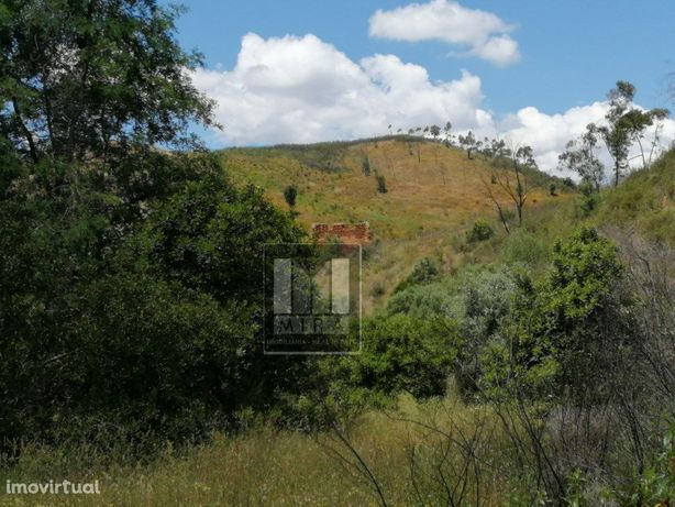 Quinta com 41 hectares situada a 10 minutos da cidade de ...