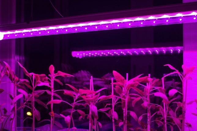 Светильник для растений, фитолампа 8Вт