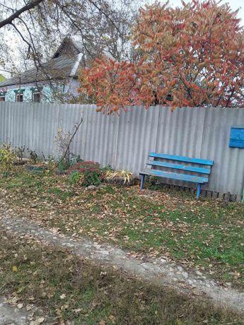 Дом село Манченки (участок