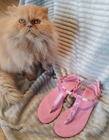 Sandały japonki różowe H&M