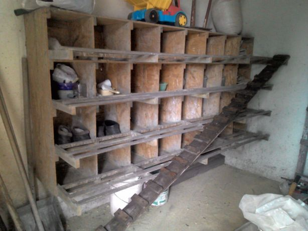 гнезда для курей несушек