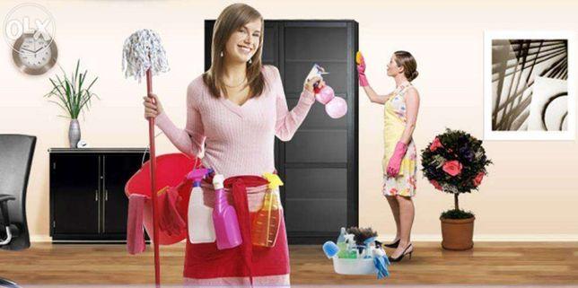 Прибирання квартир, будинків та офісів. Чистка диванів та килимів.