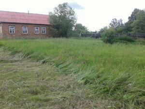 Покос травы,Спил деревьев, расчистка участка