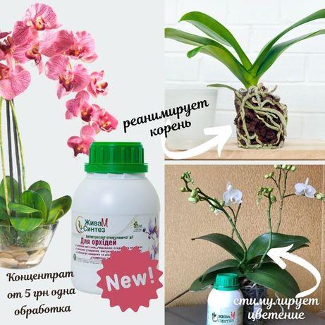 Жива М Синтез удобрение для орхидей
