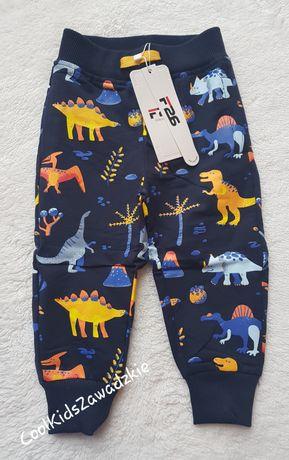 Spodnie dresowe Dinozaur