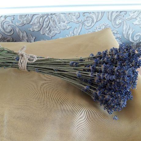 Лаванда сухоцвет букет