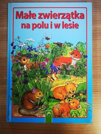 Małe zwierzątka na polu j w lesie