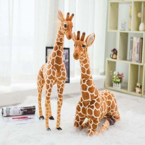 Pluszowa żyrafa 80cm