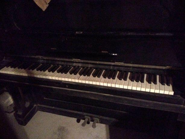 Piano Alemão da casa real portuguesa - A.H.Francke, Leipzig