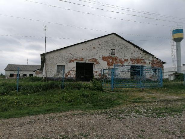 Корівник с. Вербівці, Городенківський р-н