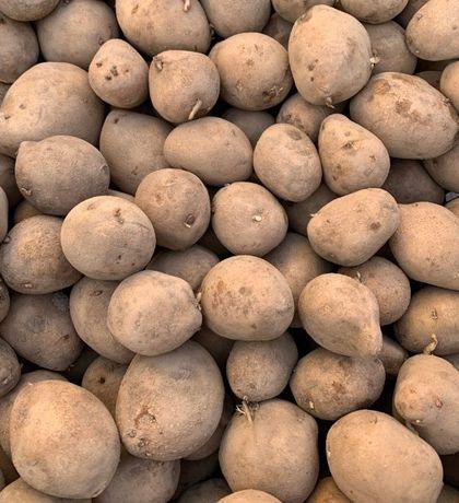 Ziemniaki Bellarosa