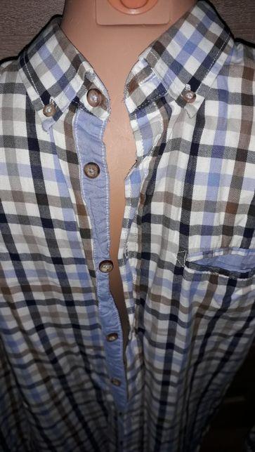 Koszula męska w kratkę Carry