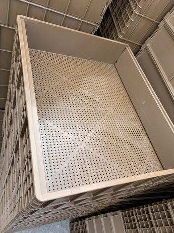 Пластиковый ящик 50*42*10 Ящики пластиковые