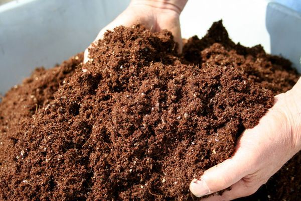 Продам перегной, навоз, органическое удобрение недорого