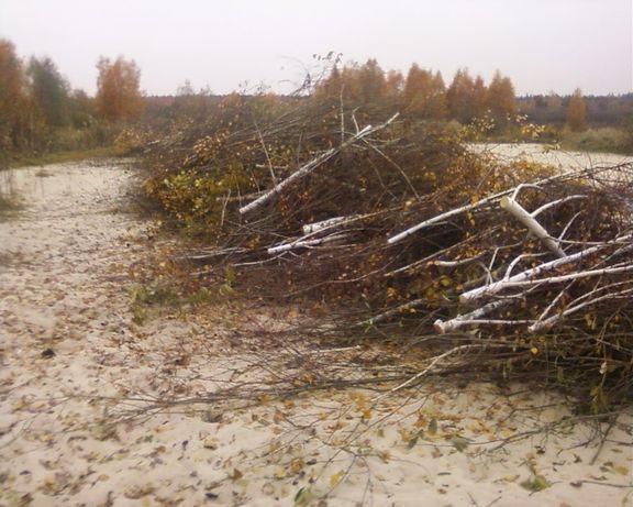 Спил деревьев Обрезка Уборка территории Расчистка выравнивание участка