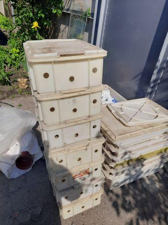 Ящик пластмассовый с крышкой