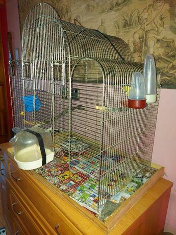 klatka dla papug