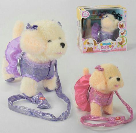 Мягкая игрушка Собачка на поводке поёт песню ходит кикки чичи лав chi