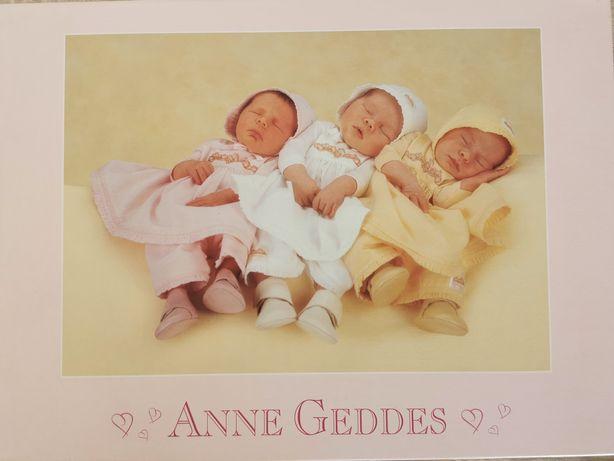 Nowe Puzzle Anne Geddes 1000 szt.