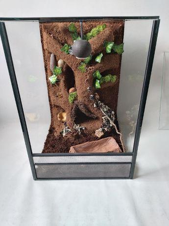 nowe terrarium pionowe z wystrojem gekon orzęsiony wij pająk wąż żaba